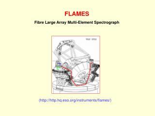 FLAMES Fibre Large Array Multi-Element Spectrograph