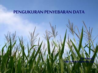 PENGUKURAN PENYEBARAN DATA