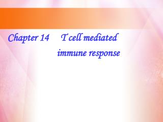 Chapter 14     T cell mediated                       immune response