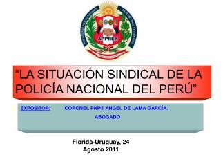 LA SITUACI N SINDICAL DE LA POLIC A NACIONAL DEL PER