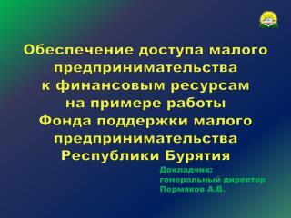 Докладчик:  генеральный директор  Пермяков А.В.