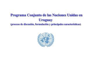 Programa Conjunto de las Naciones Unidas en Uruguay