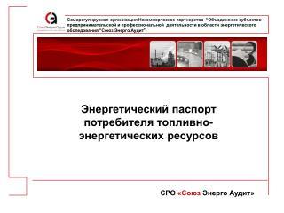 Энергетический паспорт потребителя топливно-энергетических ресурсов