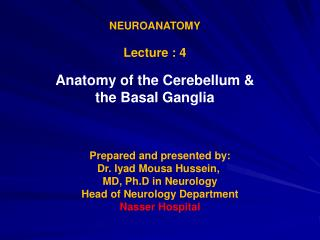 NEUROANATOMY Lecture : 4 Anatomy of the Cerebellum &  the Basal Ganglia