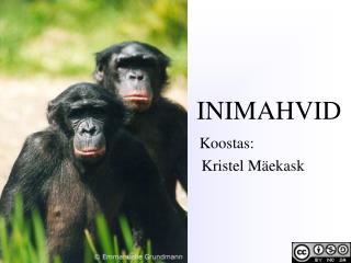 INIMAHVID