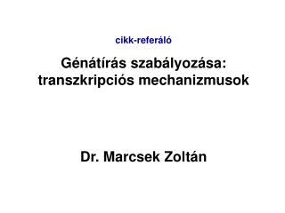 Cikk-refer l  G n t r s szab lyoz sa: transzkripci s mechanizmusok    Dr. Marcsek Zolt n
