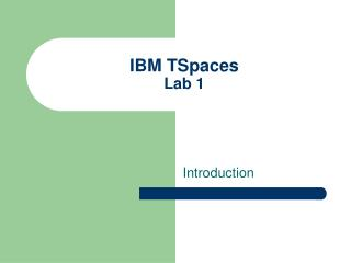 IBM TSpaces Lab 1