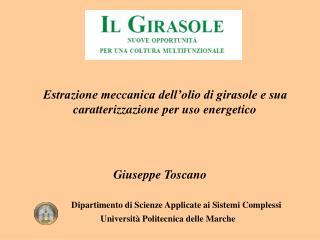 Giuseppe Toscano Dipartimento di Scienze Applicate ai Sistemi Complessi