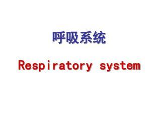 呼吸系统 Respiratory system