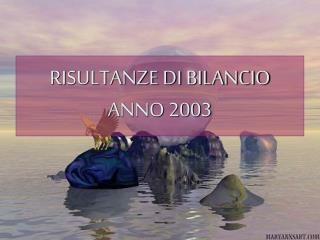 RISULTANZE DI BILANCIO ANNO 2003