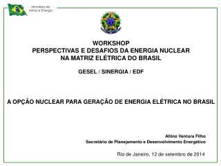 WORKSHOP PERSPECTIVAS E DESAFIOS DA ENERGIA NUCLEAR  NA MATRIZ ELÉTRICA DO BRASIL
