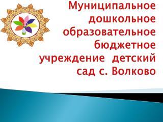 Муниципальное дошкольное образовательное  бюджетное учреждение   детский сад с. Волково
