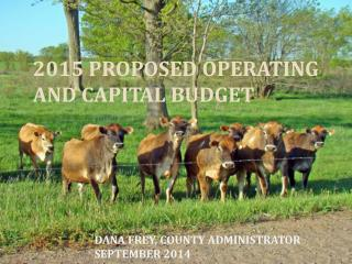 2015 PROPOSED OPERATING AND CAPITAL BUDGET
