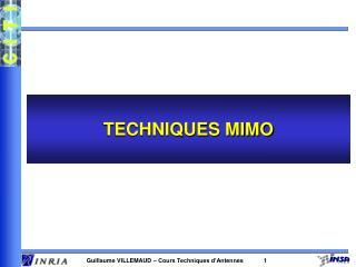 TECHNIQUES MIMO