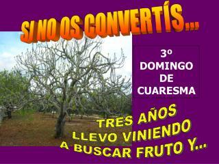 3º DOMINGO DE               CUARESMA