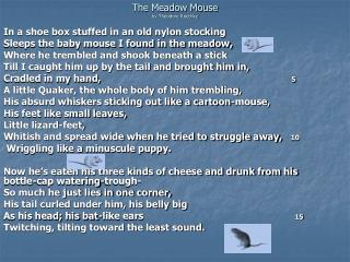The Meadow Mouse  by Theodore Roethke