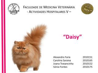 Faculdade de Medicina Veterinária Actividades  Hospitalares V  –