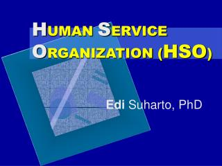 H UMAN  S ERVICE  O RGANIZATION ( HSO )