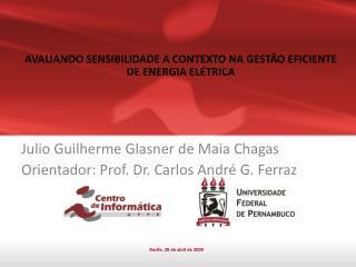 Julio Guilherme Glasner de Maia Chagas Orientador: Prof. Dr. Carlos André G. Ferraz