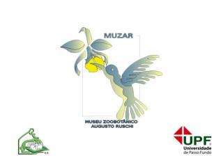 CONTATO: E-mail: muzar@upf.br Telefone: 54 3316 8316 Site: upf.br/muzar
