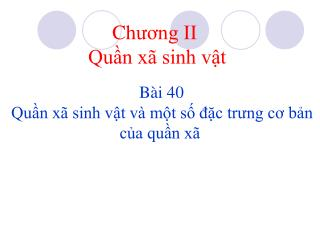 B i 40   Qun x  sinh vt v  mt s dc trung co bn ca qun x