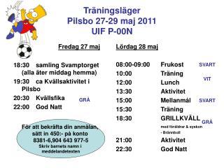 Träningsläger Pilsbo 27-29 maj 2011 UIF P-00N