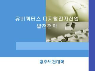 유비쿼터스 디지털전자산업 발전전략