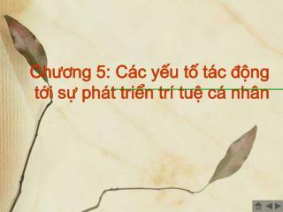 Chuong 5: C c yu t t c dng  ti s ph t trin tr  tu c  nh n