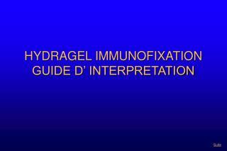 HYDRAGEL IMMUNOFIXATION  GUIDE D' INTERPRETATION