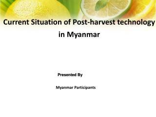 Myanmar Participants
