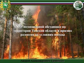 О лесопожарной обстановке на территории Томской области и прогноз развития по условиям погоды