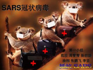 SARS 冠状病毒