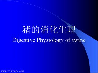 猪的消化生理 Digestive Physiology of swine