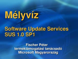 Mélyvíz Software Update Services SUS 1.0 SP1