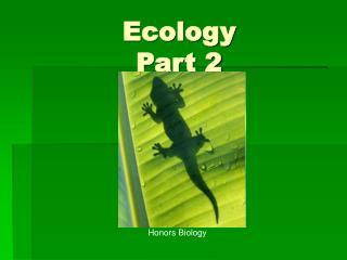 Ecology Part 2