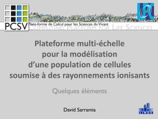 Quelques éléments David Sarramia