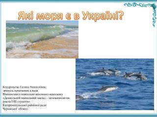 Які моря є в Україні?