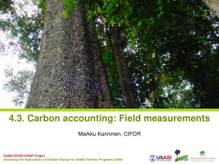 4.3. Carbon accounting: Field measurements