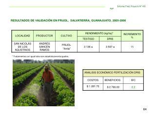 RESULTADOS DE VALIDACIÓN EN FRIJOL,  SALVATIERRA, GUANAJUATO, 2005-2006