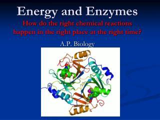 A.P. Biology