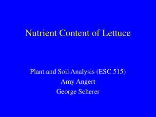 Nutrient Content of Lettuce
