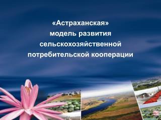 «Астраханская»  модель развития сельскохозяйственной  потребительской кооперации