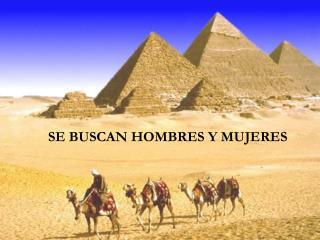 SE BUSCAN HOMBRES Y MUJERES