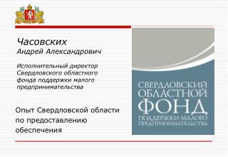 Опыт Свердловской области по предоставлению обеспечения