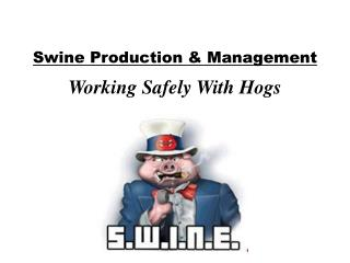 Swine Production & Management