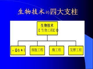 生物技术 的 四大支柱
