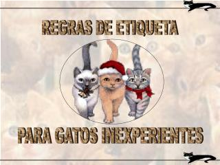 REGRAS DE ETIQUETA
