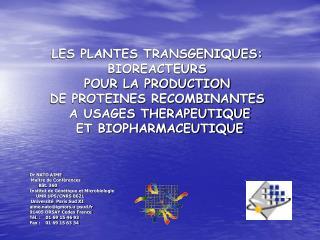 LES PLANTES TRANSGENIQUES:  BIOREACTEURS  POUR LA PRODUCTION  DE PROTEINES RECOMBINANTES