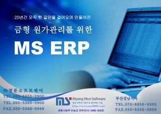 MS ERP
