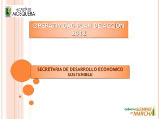 OPERATIVIDAD PLAN DE ACCION 2012